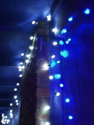 Blue and White LED Christmas Lights