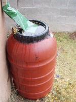 Rain Barrel overflowing with rain water