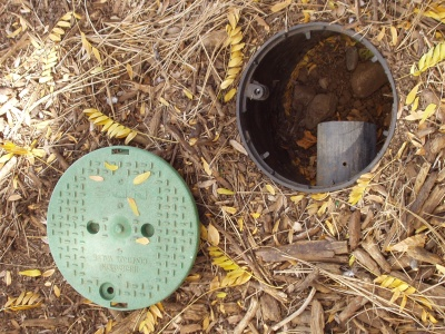 Mulched Basin for Rain and Grey Water Drain